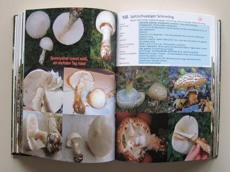 Pilzexperten Auflage 3