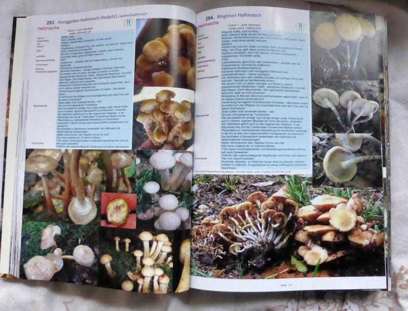 1700 Pilze Buch - Auflage 19