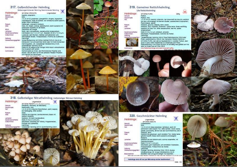 1700 Pilze Buch - Auflage 20