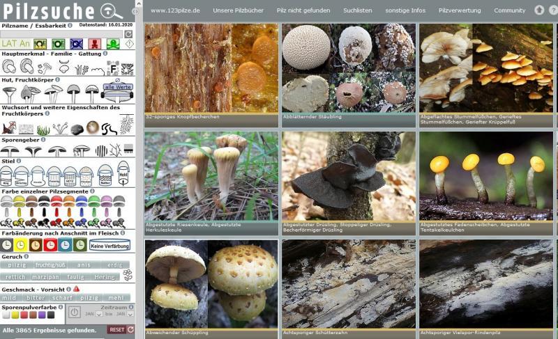 Förderung der Pilzseite 123 Pilze - Vielen Dank !!!