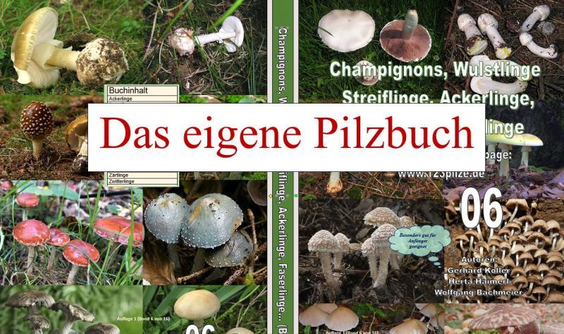 Das persönliche Pilzbuch mit eigenen Autor- oder Firmennamen und eigenen Bildern