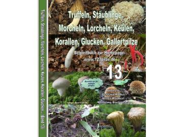 Fachbuchserie Band 13: Morcheln, Boviste