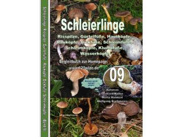 Fachbuchserie Band 9: Schleierlinge